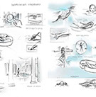 Swimitation storyboard